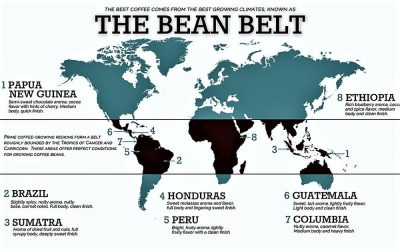 Where Do the Best Coffees Come From?